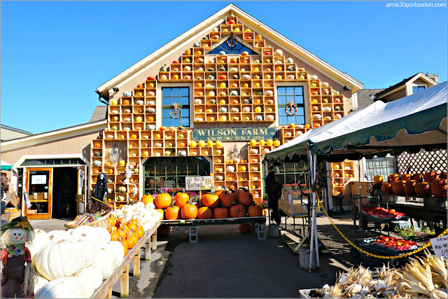 Granjas de Massachusetts: Wilson Farm en Lexington