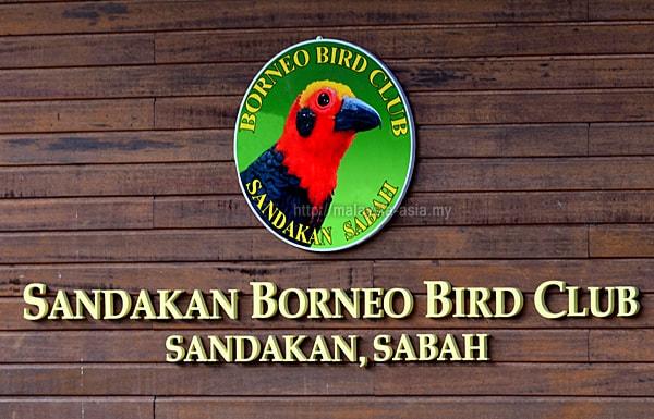 Kelab Burung Sandakan Borneo