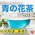 【インスタ映え】神秘のダイエットティー「青の花茶」の効果がスゴい!