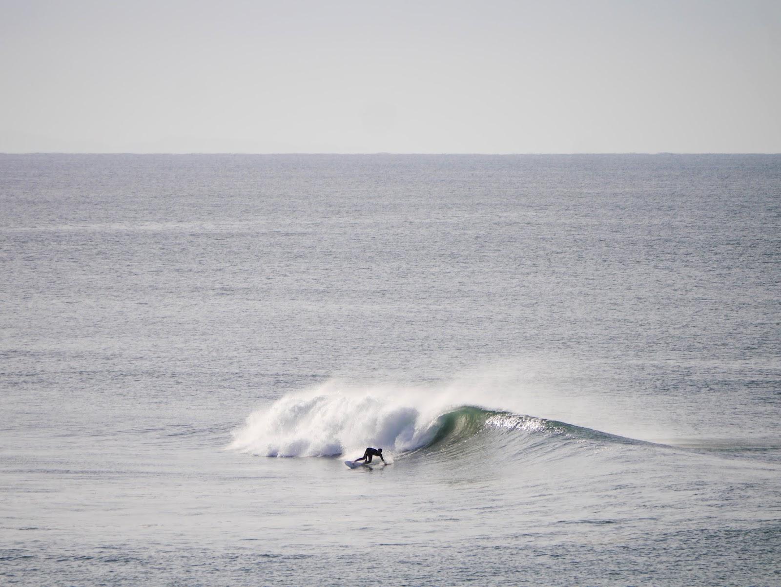 Surfinestate surf surfboard twinfin fish culture shop brand apparel clothing shape handshape Vincent Lemanceau Arthur Nelli Steve Lis Mark Richards Torren Martyn Asher Pacey Derrick Disney Ryan Burch