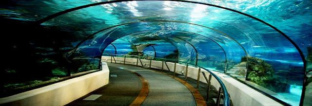 L'Aquàrium em Barcelona