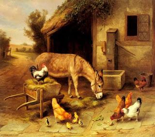 قصة الحمار المغرور والسلحفاة