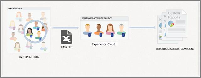 customer attributes in adobe target / customer attributes