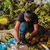 Agricultura familiar de Vilhena é fortalecida com investimentos de R$ 80 mil do PAA Federal
