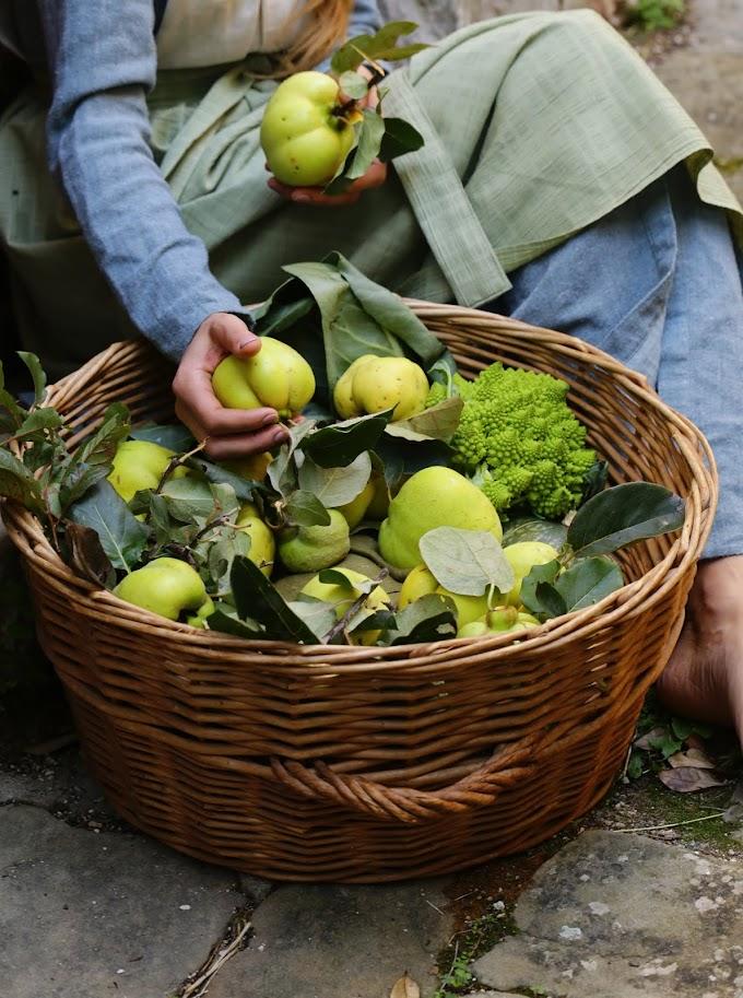 Consejos sabios para comprar frutas y verduras.