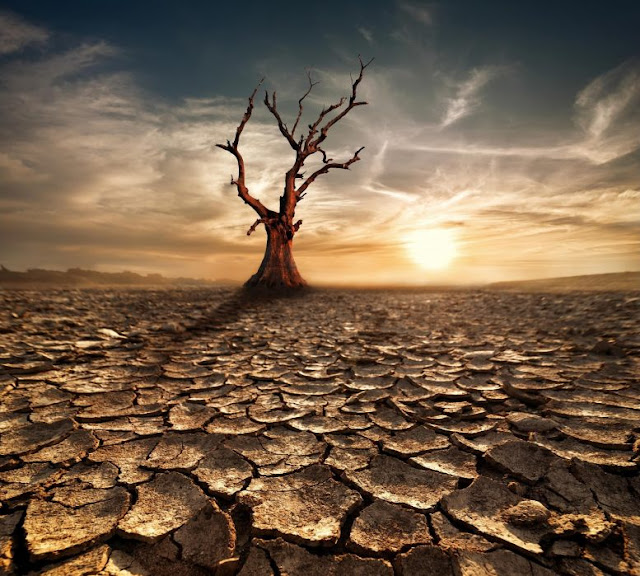 Scientists Declare Climate Emergency: Earth's Vital Signs Worsen Amid Business-As-Usual on Climate Change