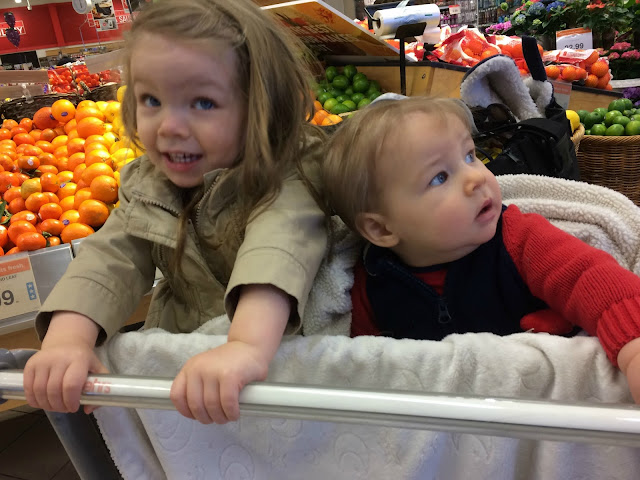 toddler and baby in shopping cart