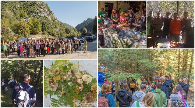 Θεσπρωτία: Λάτρεις των μανιταριών ακολούθησαν τα χνάρια τους στην ορεινή Λαμπανίτσα Θεσπρωτίας