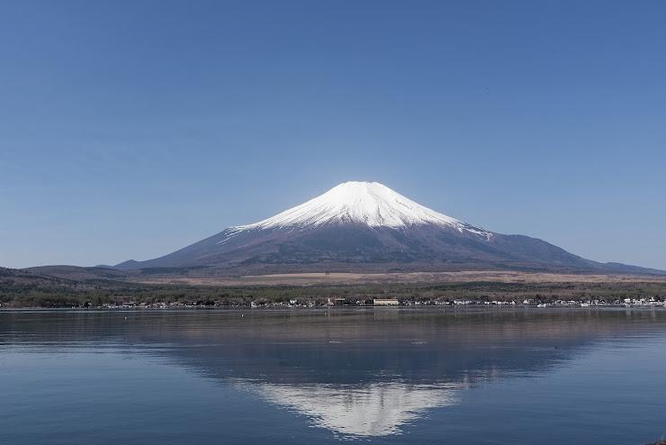 山中湖畔から望む富士山…この位置から眺める富士山が一番綺麗