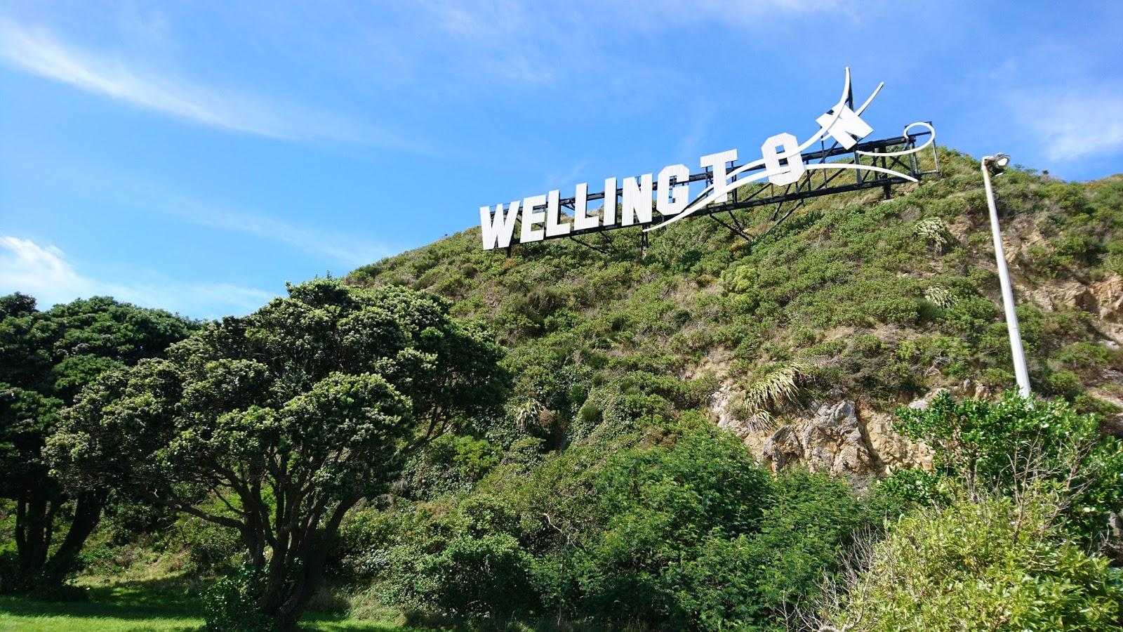 Neuseeland Optiker schrödingers reisender verschollen oder nicht weiß es nicht