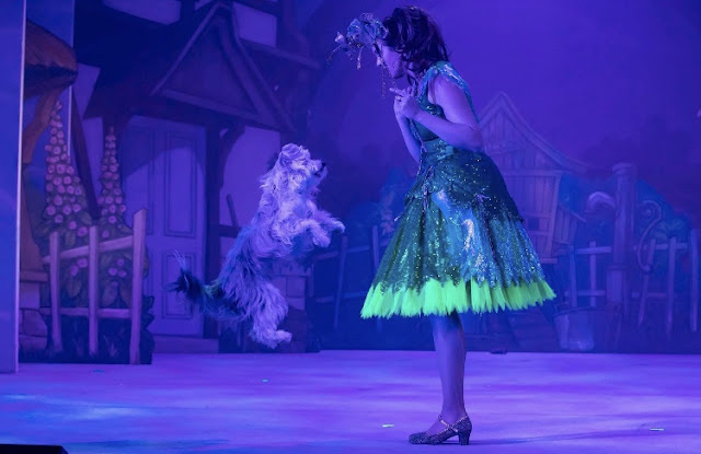 ashleigh and sully the dog on stage whitley bay panto 2019