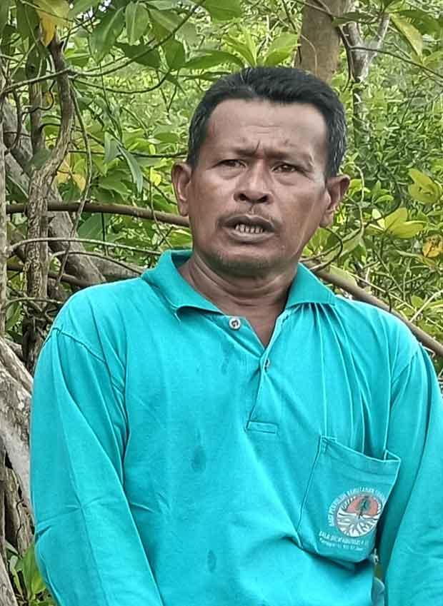 azizi aktivis mangrove dari batu bara sumut
