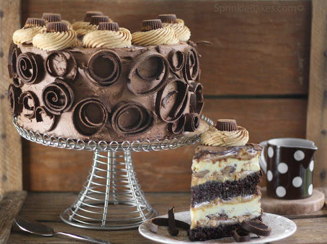 Peanut Butter Cup Chocolate Cake Cheesecake Sprinkle Bakes