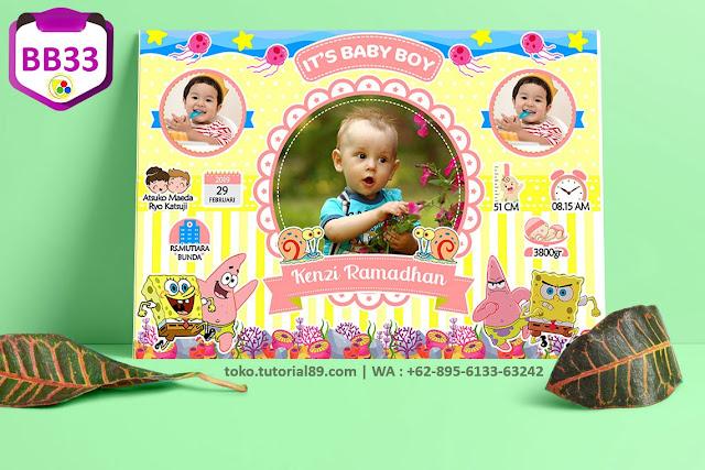 Biodata Bayi Costume Baby Boy Kode BB32 | SpongeBob