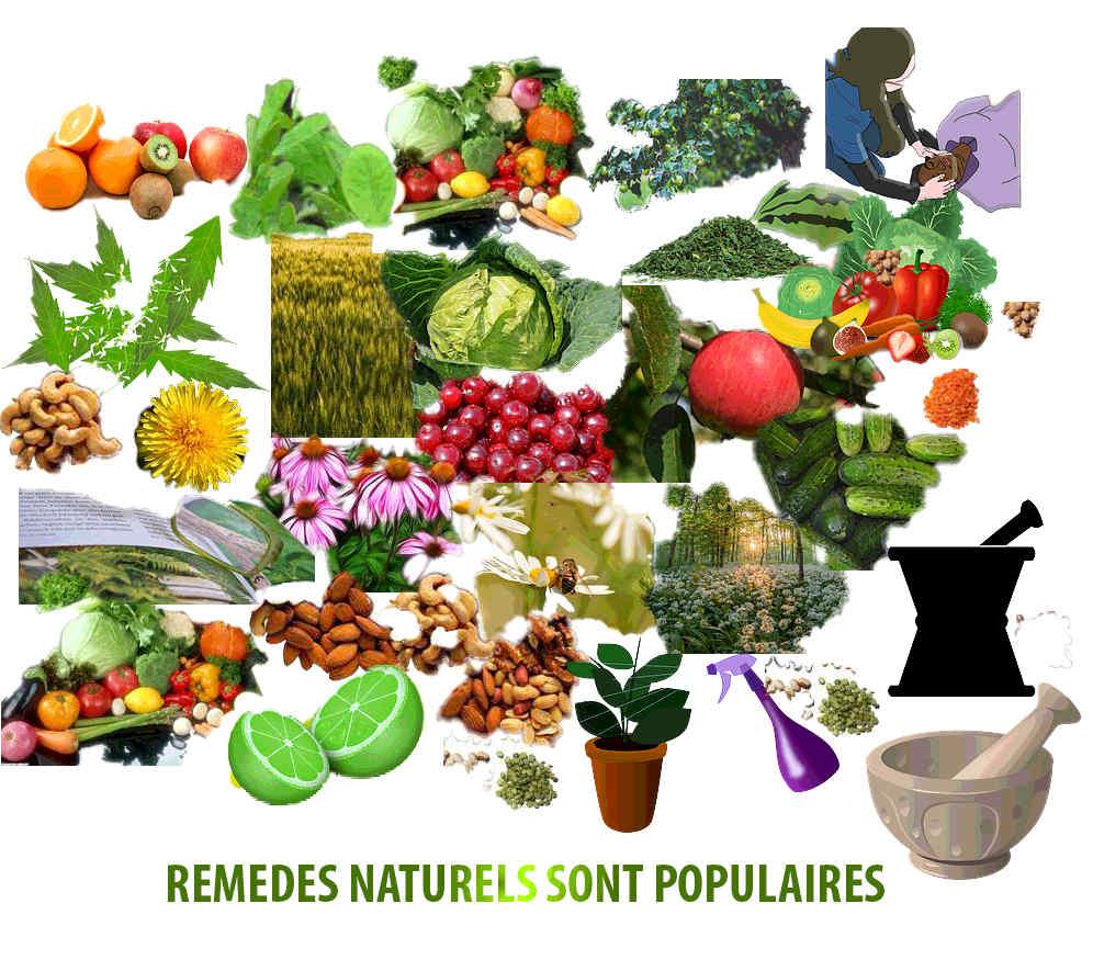 rem des naturels sont populaires rem de naturel par les plantes. Black Bedroom Furniture Sets. Home Design Ideas