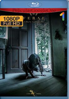 Feral (2019) [1080p Web-DL] [Latino-Inglés] [LaPipiotaHD]