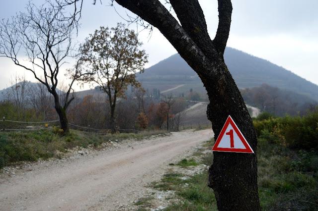 sentieri colli euganei escursioni passeggiate