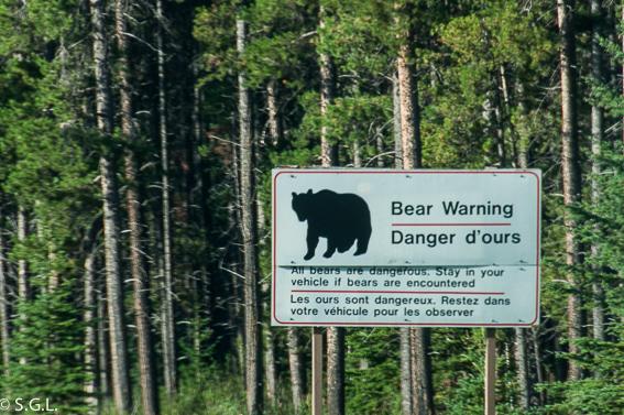 Señal peligro oso en parque nacional de Jasper. Canada