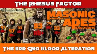 Rhesus Factor Antigen = 223 (English Ordinal)