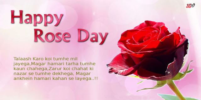 Happy Rose Day 2019 Wishes quotes images Wallpapers SMS in hindi