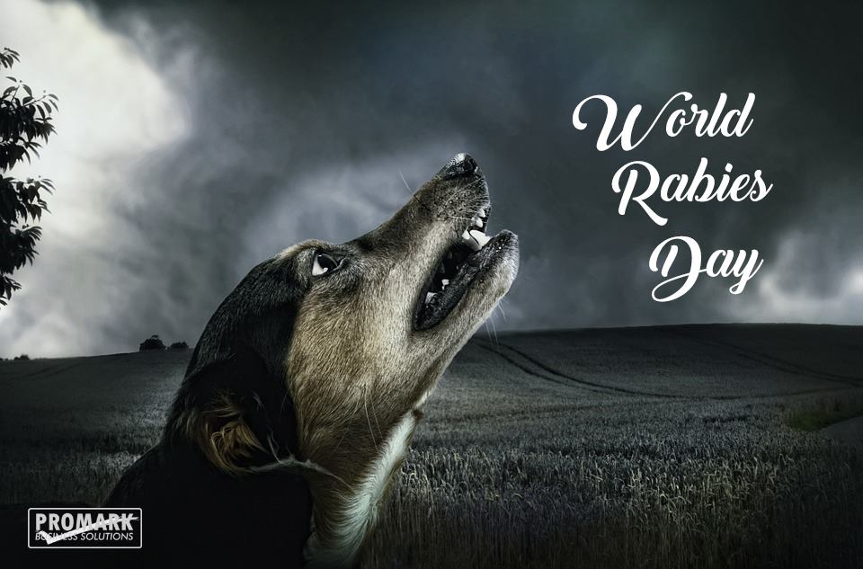 World Rabies Day Wishes Beautiful Image