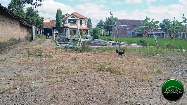 Tanah Dijual dekat Kampus PGRI Jogja