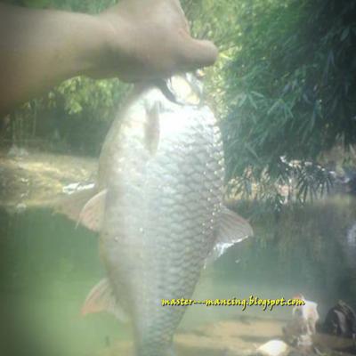 Mancing di kabupaten magelang