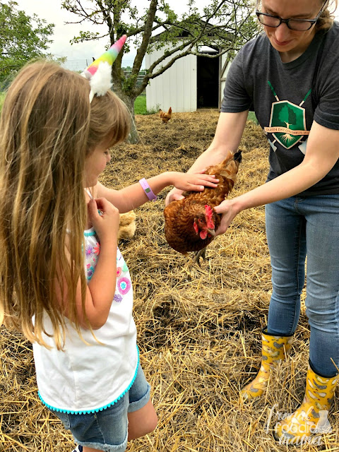 Located on 236 acres in Delaware County, the Stratford Ecological Center is an organic farm & nature preserve that provides hands-on education about sustainable agriculture to its visitors.