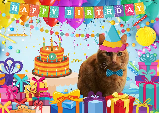 Fudge 6th Birthday Pawtrait  ©BionicBasil®