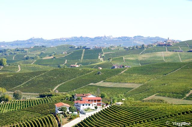Le colline delle Langhe viste dal Castello di Barolo