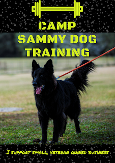 Sammy the Dog Trainer