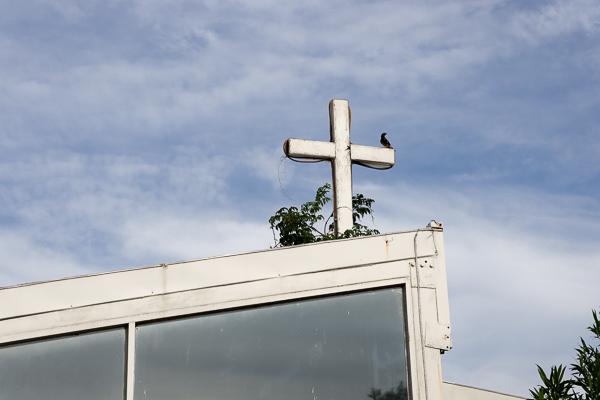 台中潭子心田花園荷花池、白色教堂、陽光草坪,親子景點免費入園