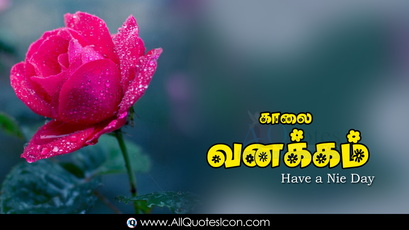 Best Good Morning Images Tamil Kavithaigal Hd Wallpapers Top Latest New Good Morning Greeetings In Tamil Whatsapp Pictures Online Free Download Images Www Allquotesicon Com Telugu Quotes Tamil Quotes Hindi