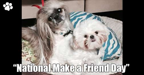 National Make a Friend Day Wishes Photos