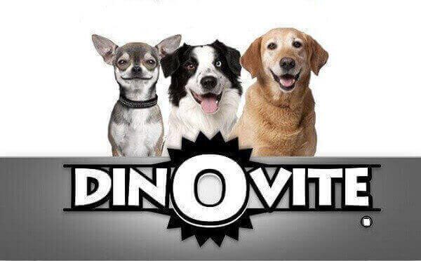 dinovite for dogs