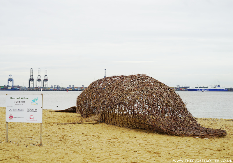 Beached Willow at Harwich Seafront
