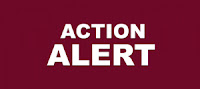 Action Alerts in large, white capital letters on a plain burgundy background