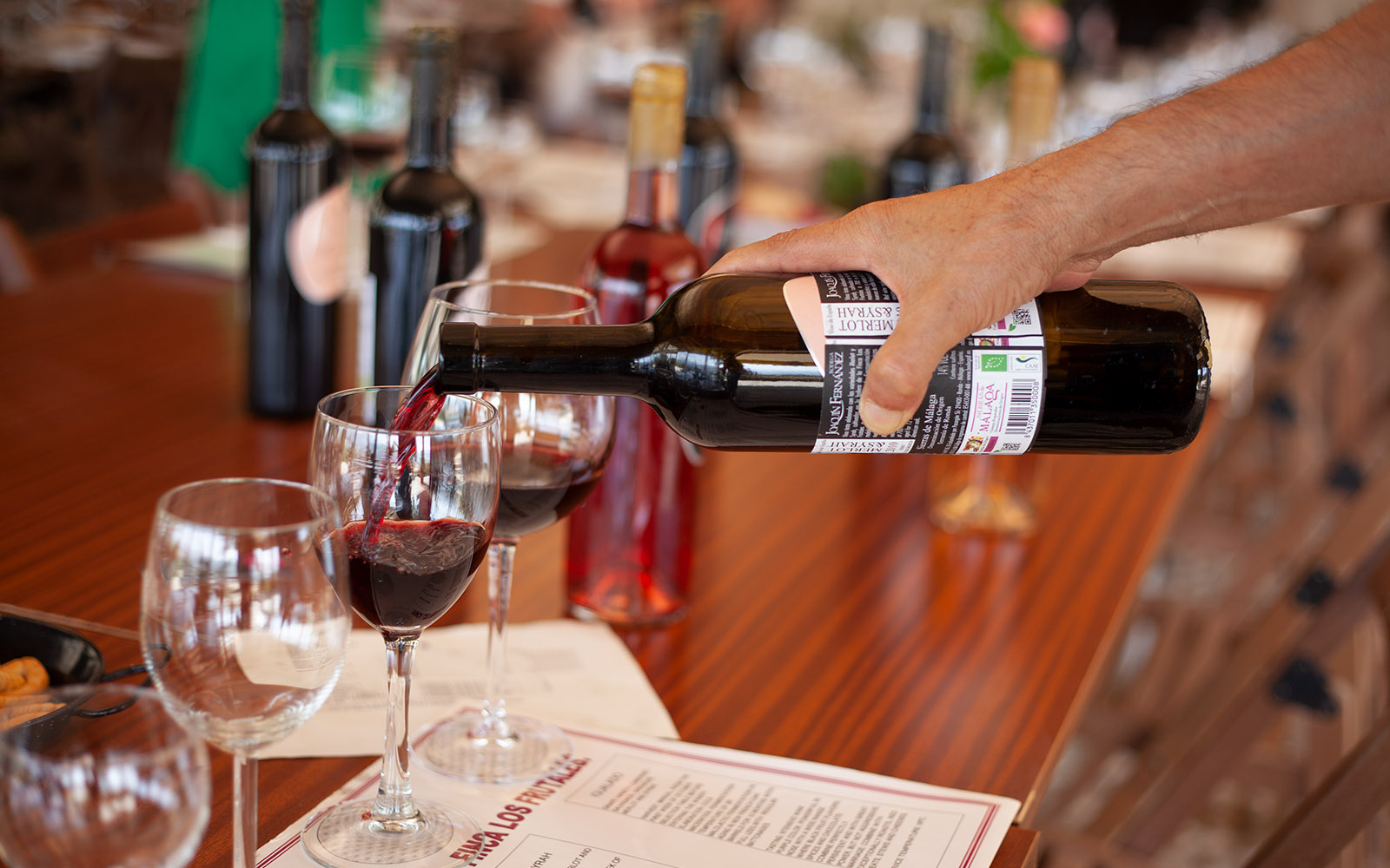 Дегустацию вин в городе Ронда, Испания