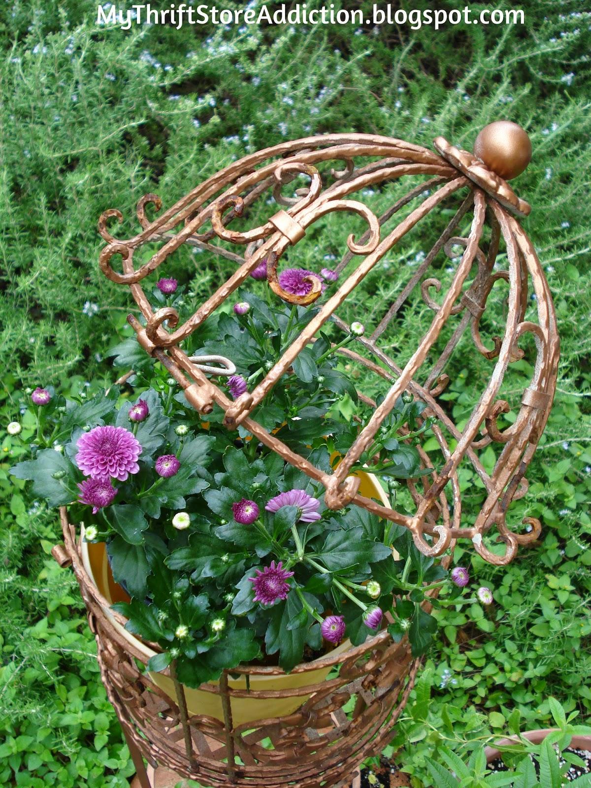 Repurposed bird cage planter