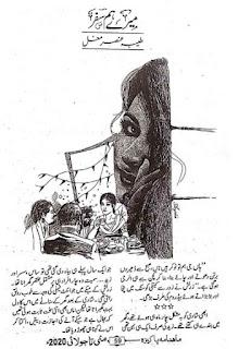 Mere Humsafar Afsana By Tayyaba Ansar Mughal