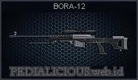 BORA-12