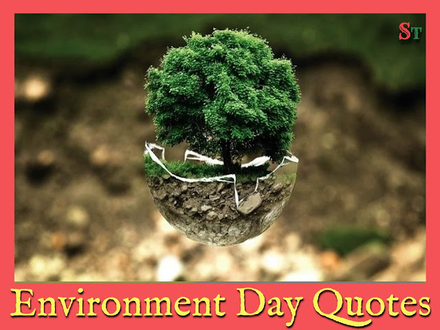world environment day image