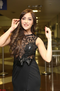 Angela Krislinzki in Transparent Black Gown at Rogue Movie Teaser Launch 1st March 2017 009.JPG