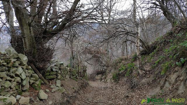 Pista entre las murias bajando del Curuchu Braña