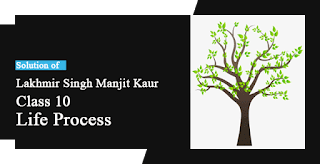 Solutions of Life Process Lakhmir Singh Manjit Kaur SAQ, LAQ and MCQ Pg No. 25 Class 10 Biology