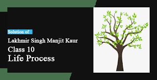 Solutions of Life Process Lakhmir Singh Manjit Kaur SAQ, LAQ and MCQ Pg No. 25 Class 10 Biology