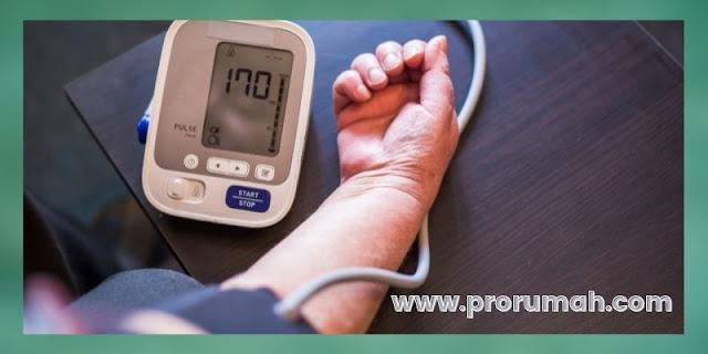 manfaat tanaman cincau - mengatasi masalah hipertensi