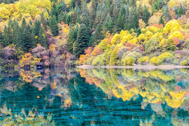 Autumn paintings in Sichuan