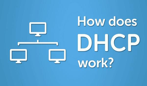 Cách thức hoạt động của DHCP là gì?