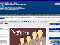 Formasi CPNS 2019 Pemerintah Kabupaten Mentawai